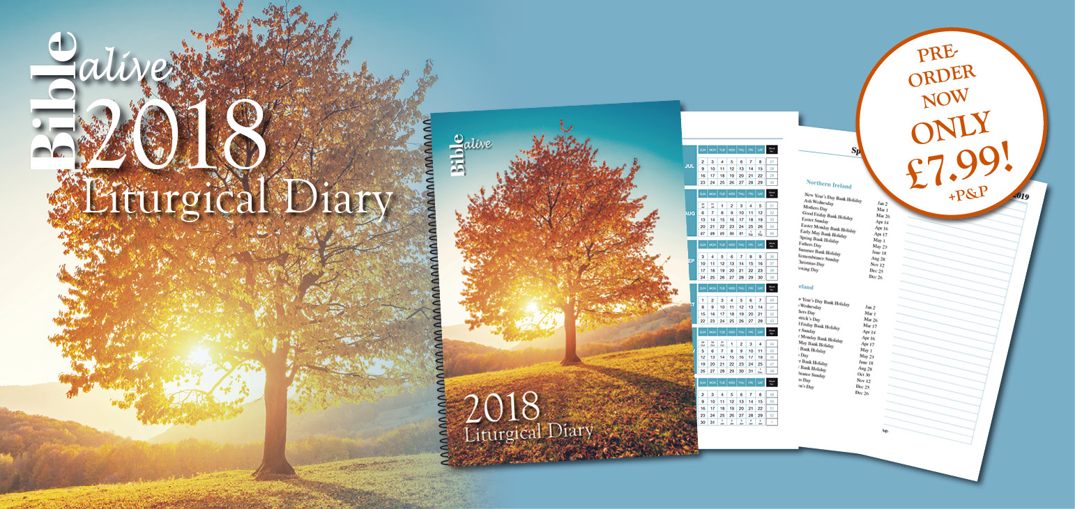 Diary Web Banner